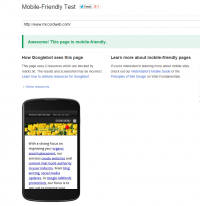 Screen Shot Showing the Results of the Google Mobile Friendly Testing Tool
